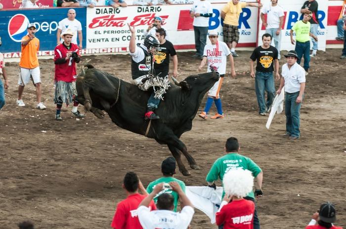 Rodeo at Las Fiestas de Zapote in San Jose